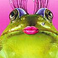 froggy diva